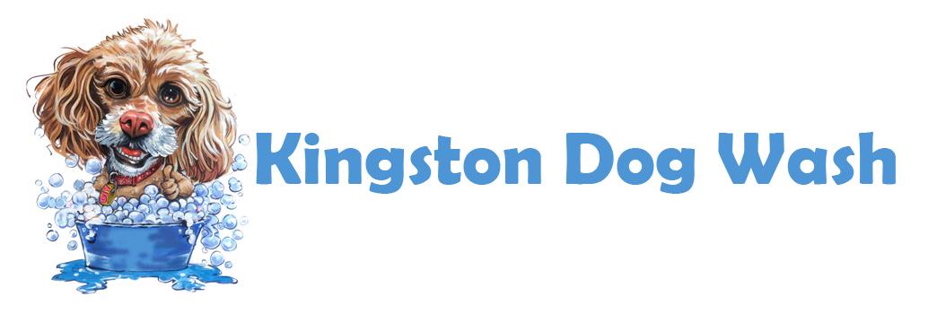 Kingston Dog Wash